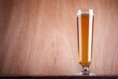 Стекло пива Pilsner Стоковые Фото