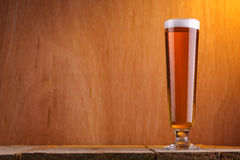 Стекло пива Pilsner Стоковое Фото