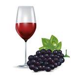 Стекло при красное изолированные вино и виноградина Иллюстрация штока