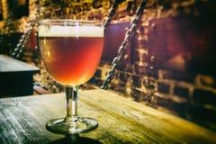 Стекло свежего пива стоковые фотографии rf