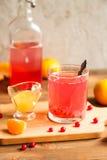 Стекло свежего сока красных смородин Стоковые Изображения RF