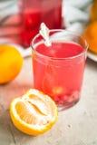 Стекло свежего сока красных смородин Стоковые Изображения