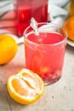 Стекло свежего сока красных смородин Стоковые Фотографии RF
