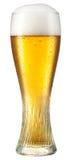 Стекло светлого пива с падениями изолированного на белизне. Cli Стоковые Изображения RF