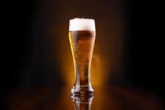 Стекло светлого пива Стоковое Изображение RF