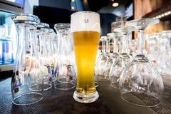 Стекло светлого пива Стоковые Фото
