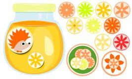 Стекло с оранжевым мармеладом, ярлыками маркировки ежом и апельсином Комплект круглых стикеров с различными видами цитруса стоковые изображения
