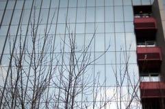 стекло фасада самомоднейшее Стоковое фото RF