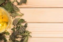 Стекло чая крапивы Стоковая Фотография RF