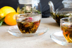 Стекло чая oolong чашки Стоковые Изображения