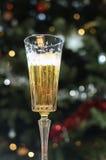 Стекло Шампани перед предпосылкой света рождества Стоковое фото RF
