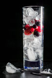 Стекло льда с черными смородинами и водой крыжовников ягоды красными Освежая коктеиль вода лета льда питья цитруса carafe померан Стоковые Изображения