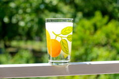 Стекло clorinated воды из крана в сокровище горячего лета реальном стоковая фотография