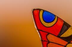 Стеклянная бабочка Стоковая Фотография