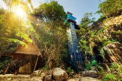 Стеклянная башня среди древесных зеленей Изумительный внешний лифт Стоковые Изображения