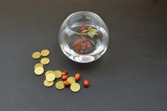 Стеклянная ваза с листьями воды Стоковая Фотография