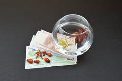 Стеклянная ваза с листьями и водой Стоковое фото RF