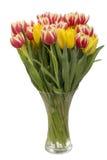 стеклянная ваза тюльпанов Стоковая Фотография RF