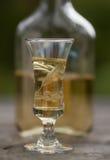 стеклянная настойка Стоковая Фотография RF