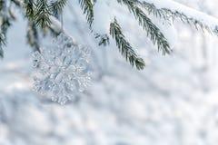 Стеклянная снежинка на рождественской елке Стоковое Изображение