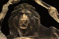 Стеклянная статуя льва стоковое изображение