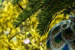 Стеклянная сфера на лапке мех-дерева Стоковые Фотографии RF