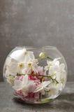 Стеклянная сфера с цветочной композицией внутрь Стоковое Изображение