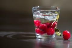 Стеклянная чашка заполненная с водой Стоковые Изображения RF