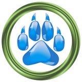Стеклянные следы ноги большой кошки Стоковые Фото