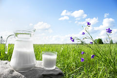 Стеклянный кувшин с молоком и стеклом на траве против фона живописных зеленых лугов с цветками стоковое фото rf
