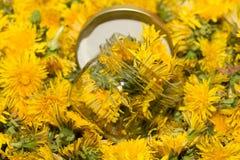 Стеклянный опарник на естественной предпосылке желтых одуванчиков Отмелый de Стоковая Фотография RF