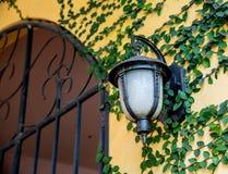 Стеклянный фонарик Стоковые Фотографии RF