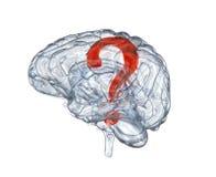 Стеклянный человеческий мозг с вопросительным знаком иллюстрация вектора
