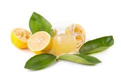стеклянный шар свеже сжиманного лимонного сока, squeezer лимона Стоковые Изображения RF