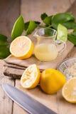 стеклянный шар свеже сжиманного лимонного сока, squeezer лимона Стоковая Фотография RF
