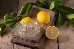 стеклянный шар свеже сжиманных лимонного сока, squeezer лимона и r Стоковые Изображения RF