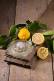 стеклянный шар свеже сжиманных лимонного сока, squeezer лимона и r Стоковые Фото