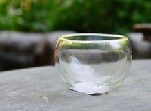 Стеклянный шар для чая puer Стоковые Фотографии RF