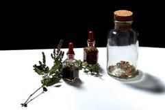 3 стеклянных бутылки с травяными выдержками и высушенными травами Стоковая Фотография RF