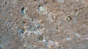 Стена абстрактного grunge текстуры старая коричневая стоковое изображение rf