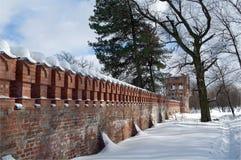 стена башни Стоковые Изображения