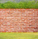 стена валов травы кирпича Стоковая Фотография RF