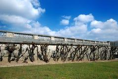 стена валов Стоковое Изображение