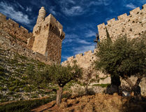 Стена города Иерусалима старая, панорама Стоковые Фото