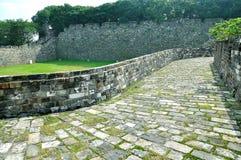 Стена города Нанкина Ming Стоковое Изображение