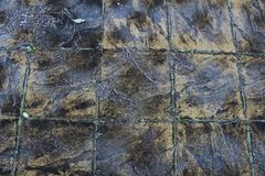 Стена дизайна горы стоковое изображение