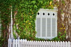 Стена дома среди зеленого цвета стоковая фотография rf