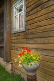Стена загородного дома, и цветки в баке литого железа Стоковые Фото