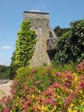 Стена замка на St Fagans Стоковое Изображение