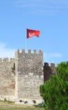 Стена замка расположенная в Ephesus стоковое фото rf
